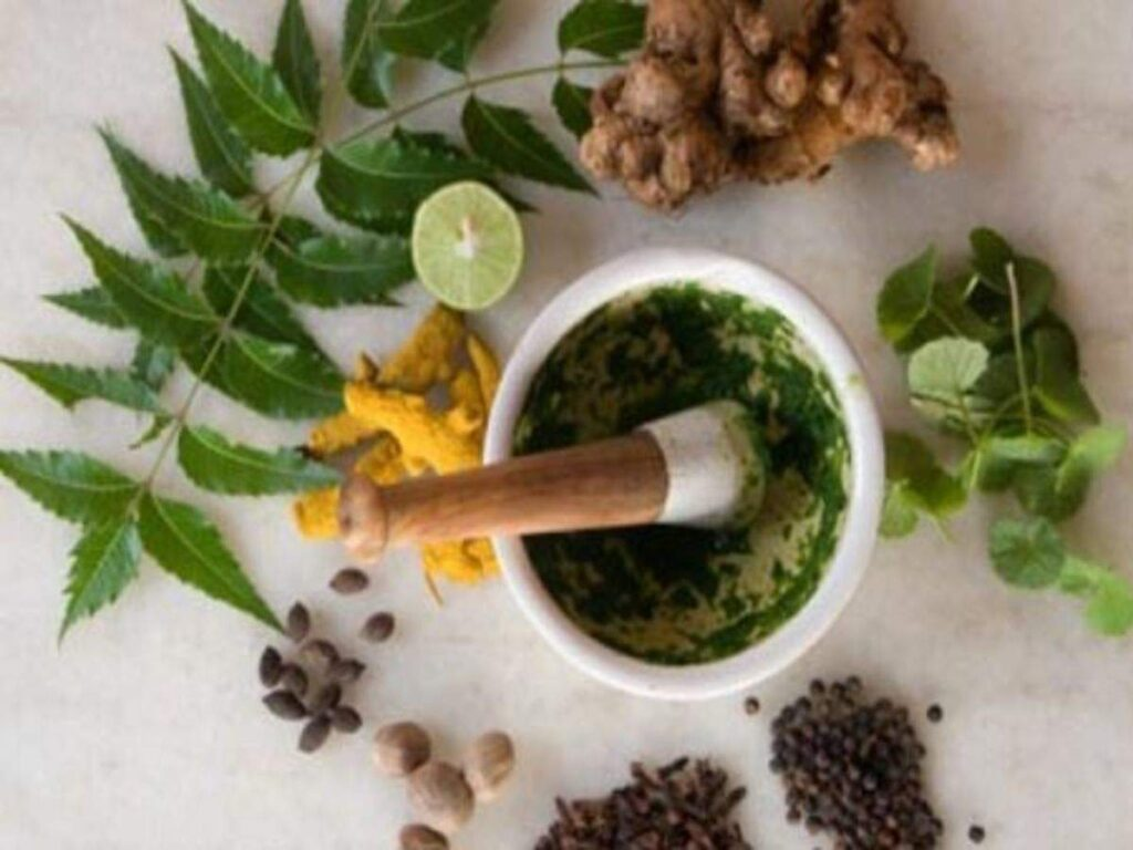 Herbs for digestion: Get in order the natural way